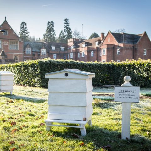 Italian garden Beehives