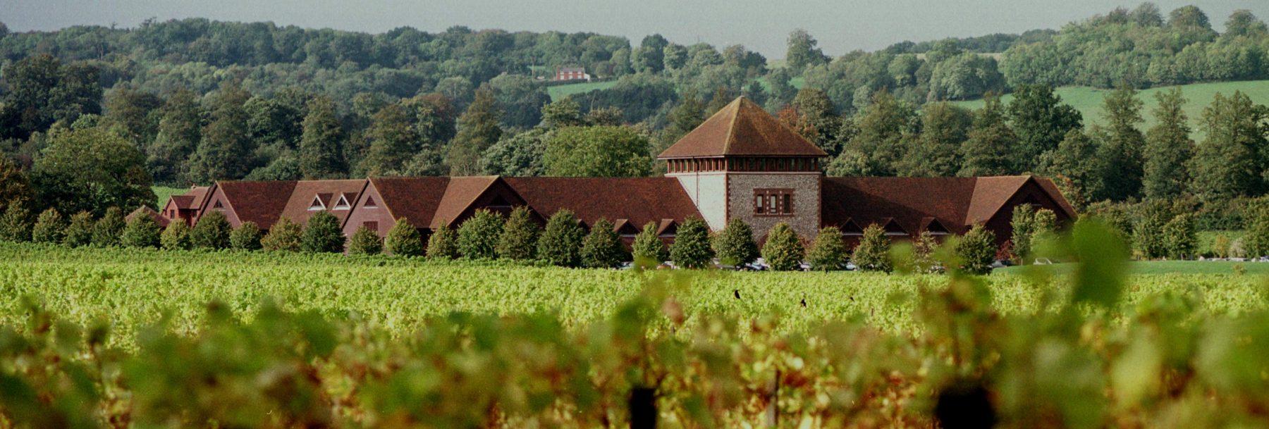 Denbies Wine Estate and vineyards