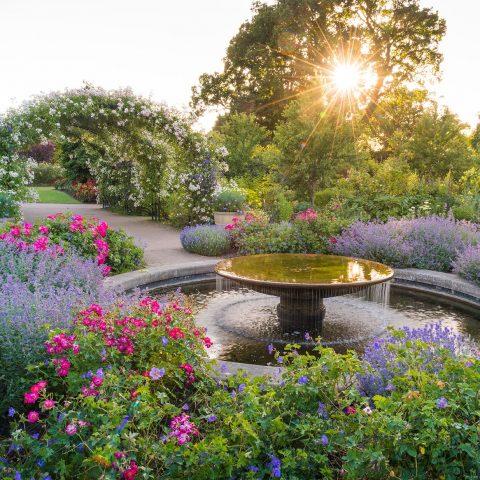 Visit Wisley Gardens